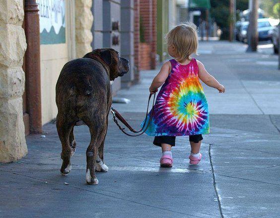 Дети и собаки 8