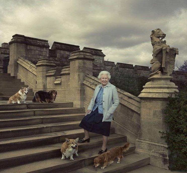 Корги и королева Великобритании