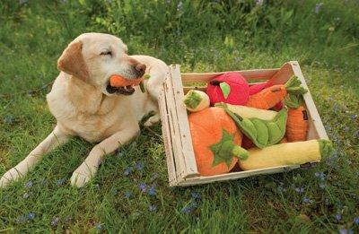 Собака вегетарианец