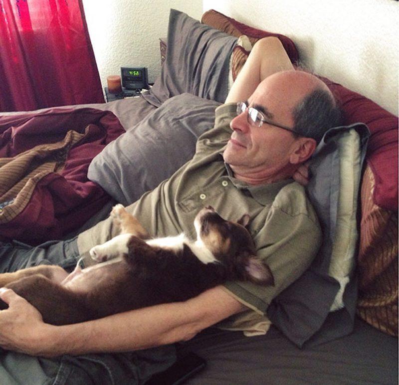 Папы и собаки