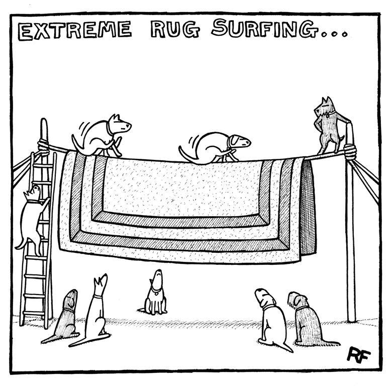 Как собаки меняют нашу жизнь?