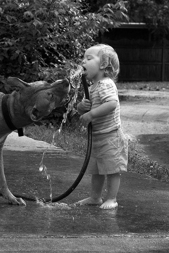 Черно-белая дружба