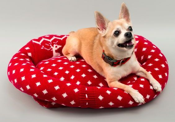Лежак для собаки