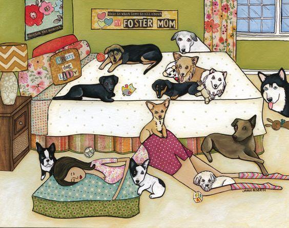 Жизнь собачника