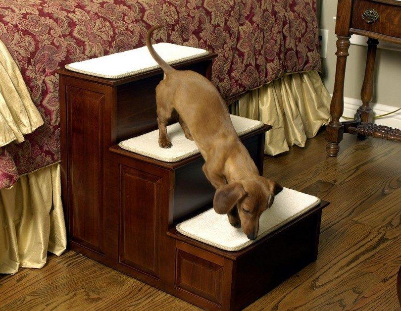 Пандусы для собак