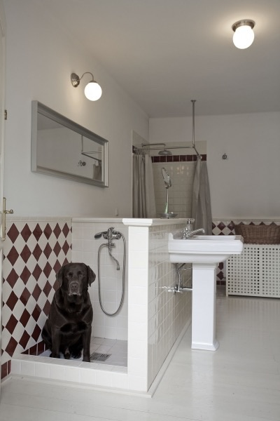 Мини-душ для собак