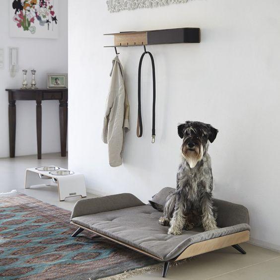 Идеи собачьего уголка
