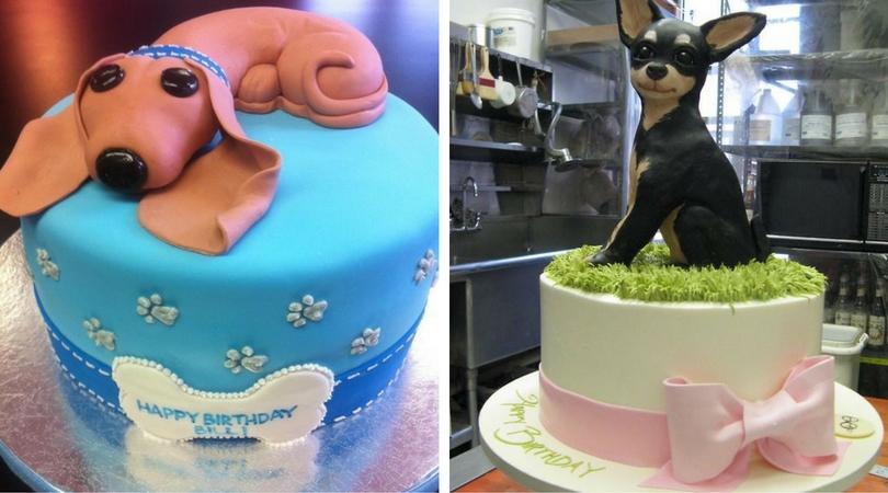 Собака на торте