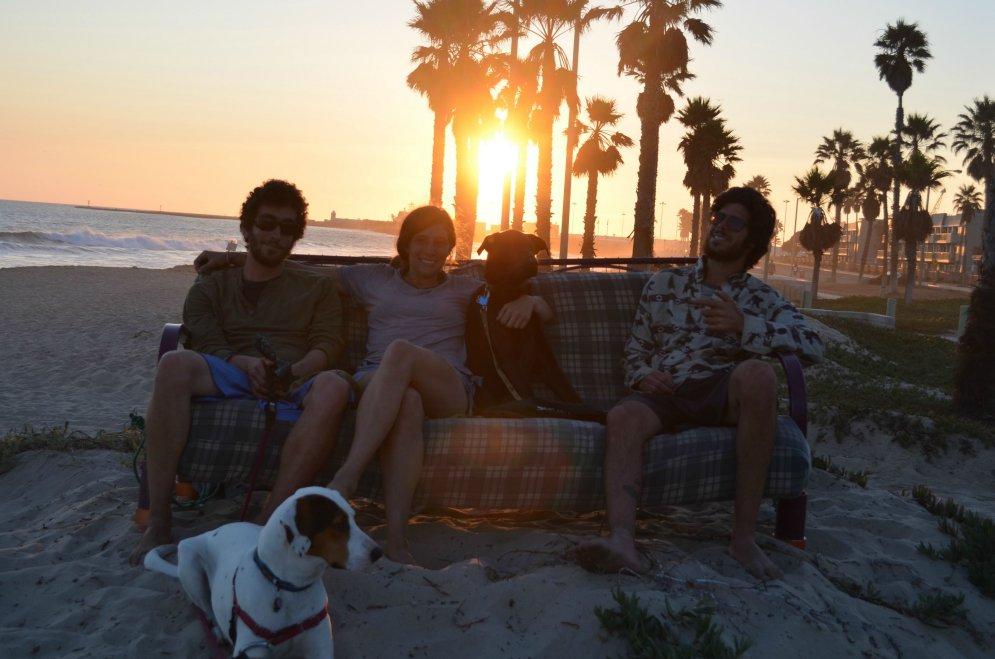 3 друга, 2 собаки, 1 диван