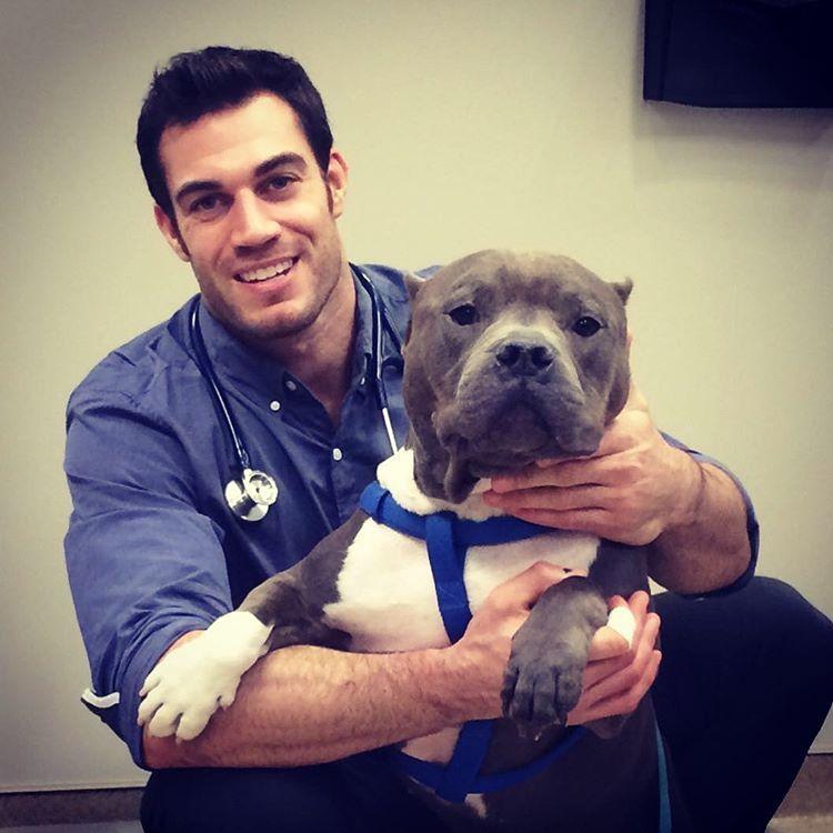Необычный ветеринар
