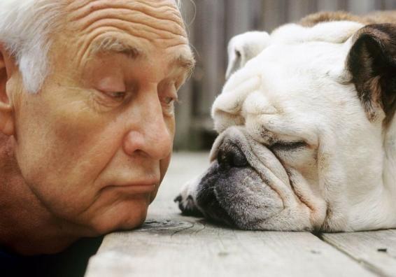 Собака - лучший друг пожилого человека