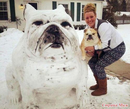Собаки из снега