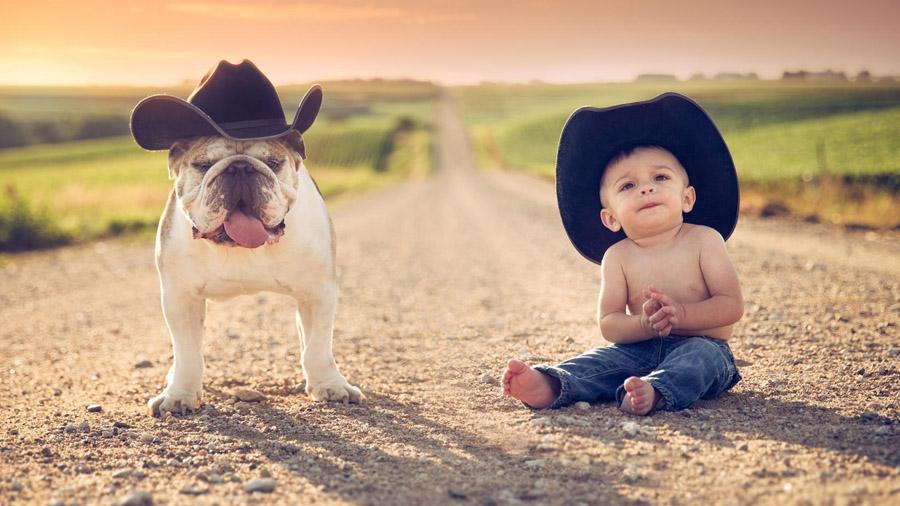 Средние собаки для ребенка